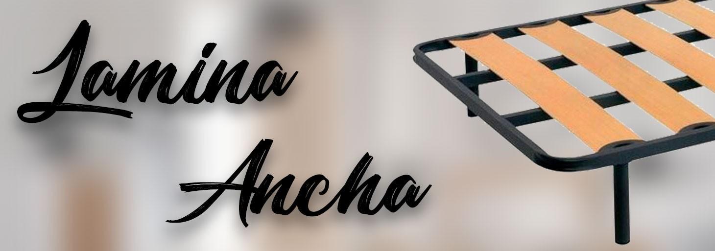 Lamina Ancha